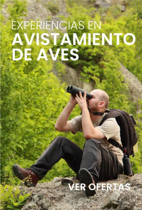 Promociones citytoursviajes.com